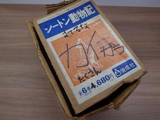 うさぎ 003.JPG